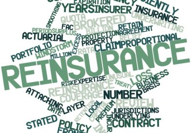 What is Reinsurance